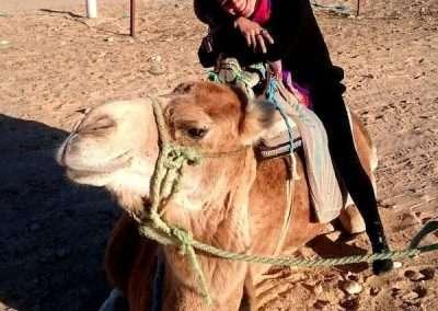 Alice sitting on camel